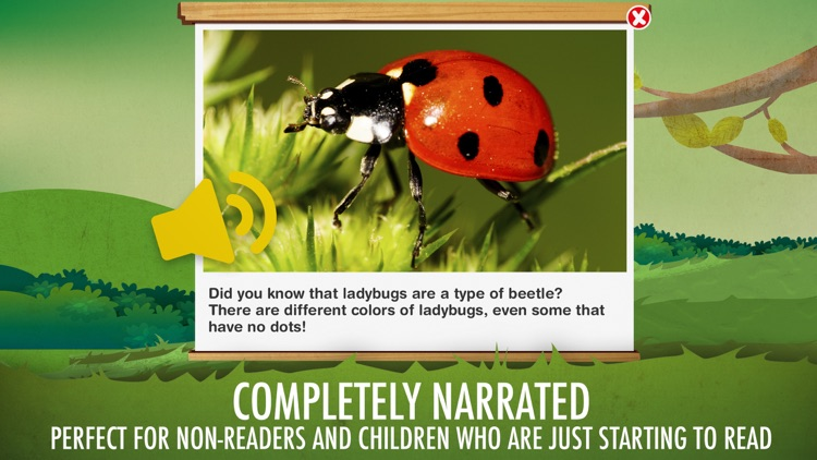 The Bugs I: Insects? screenshot-5