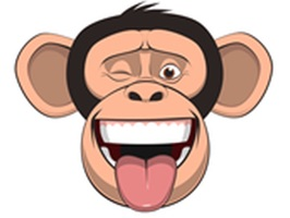 Wired Monkey