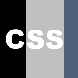 Css Ptm By Css Decisions Sdn d