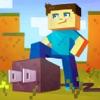 Plug for Minecraft iPhone / iPad
