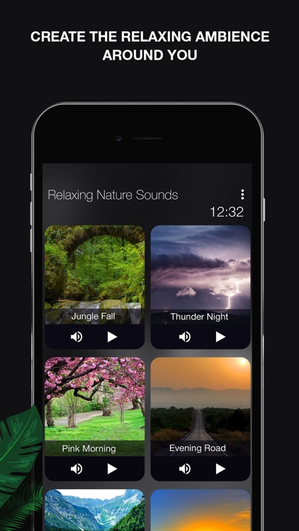 Nature Sounds: Relax, Meditate