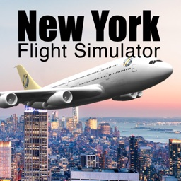 New York Flight Simulator