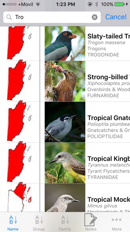 Belize Birds Field Guide screenshot-3