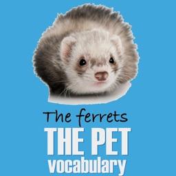 The Pet Name Vocabulary