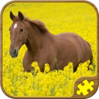 Codes for Horse Jigsaw Puzzles - Brain Training Games Hack
