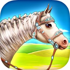 Activities of Horse Care Game