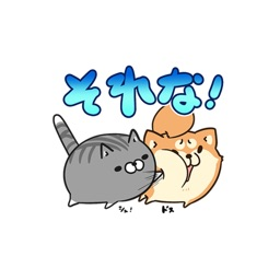 plump dog & plump cat stickers