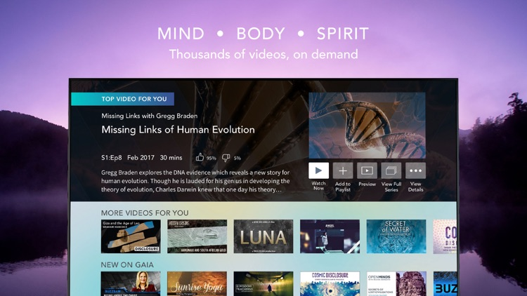Gaia: Streaming Consciousness