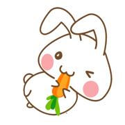 Onigiri Bunny Stickers