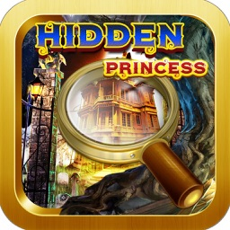 The Hidden Princess