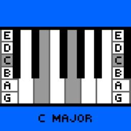 Verti-Chord Pro