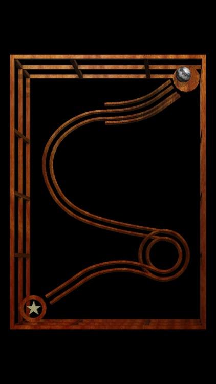 Labyrinth Lunacy screenshot-4