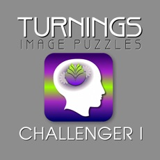 Activities of Turnings Image Puzzles Charllenger 1