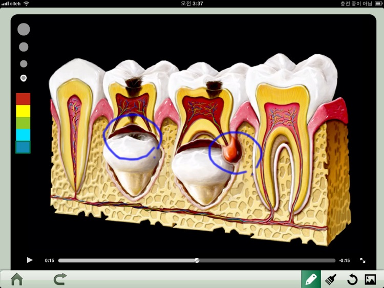 Dental iClinic screenshot-1