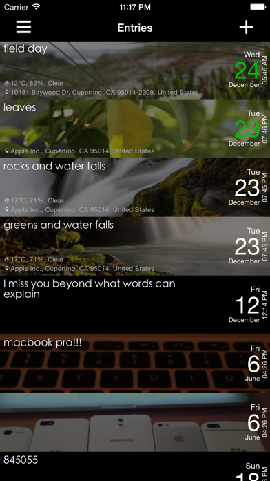 Dayly - Diary, Journal, Notes, Pictures screenshot two