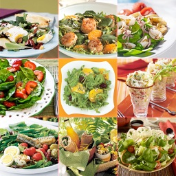 Salad Recipes..