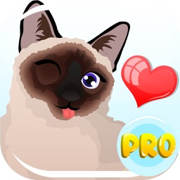 Siamese Cat Emoji – Stickers for Text Messages Pro