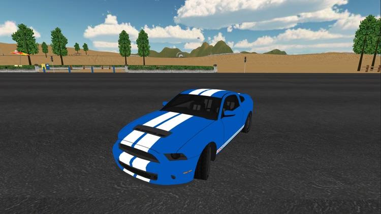 Flying Car Driving Simulator 3D screenshot-3
