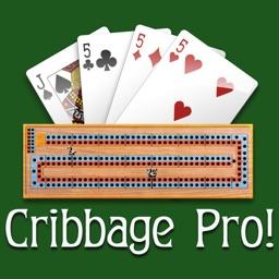 Cribbage Pro