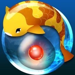 Zen Koi - A Tranquil Aquatic Journey