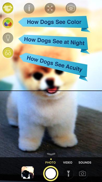 Dog Vision HDのおすすめ画像2