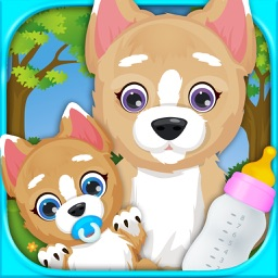 Newborn Puppy Baby & Mommy Dog Pregnancy Pets Game