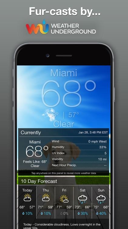 Boo Weather screenshot-3