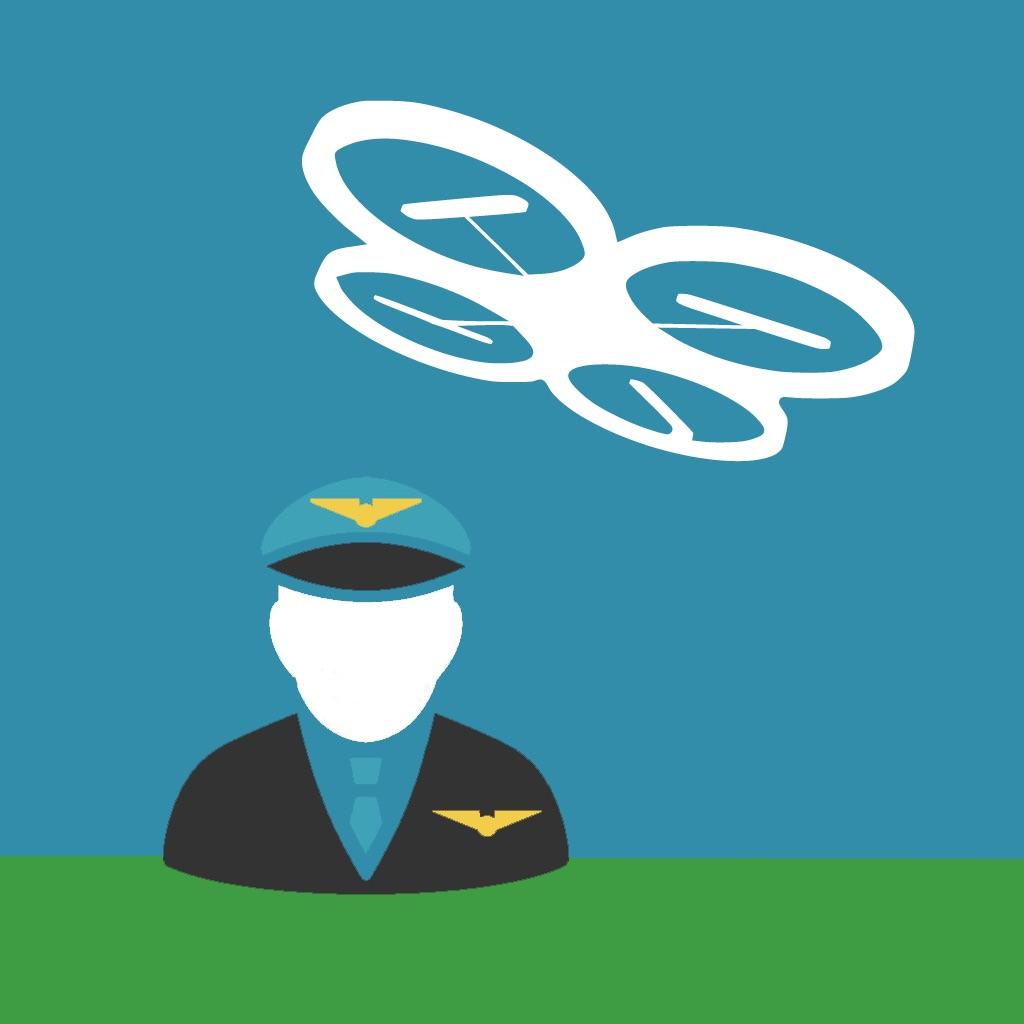 Drone Co-Pilot