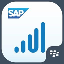 SAP Roambi Analytics for BlackBerry