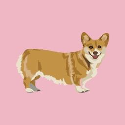 Dog Limited