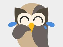 Hootsuite: Schedule Posts for Twitter & Instagram