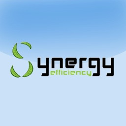 Synergy Efficiency
