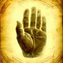 Palm Reading Chart - Future Palmistry Hand Scan