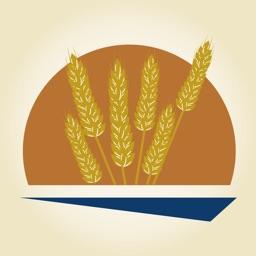 Dakota Mill and Grain