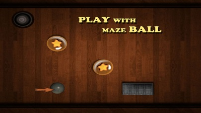Real Maze Ball Puzzle Challenge screenshot two