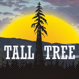 Tall Tree Music Festival