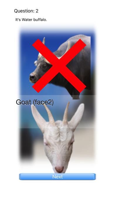 Animal Faces Touch 〜動物の顔を当ててみよう〜のおすすめ画像4