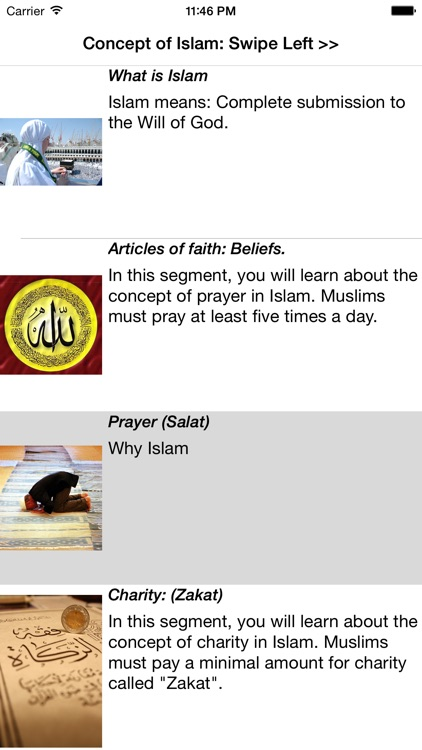 Concept of Islam screenshot-4