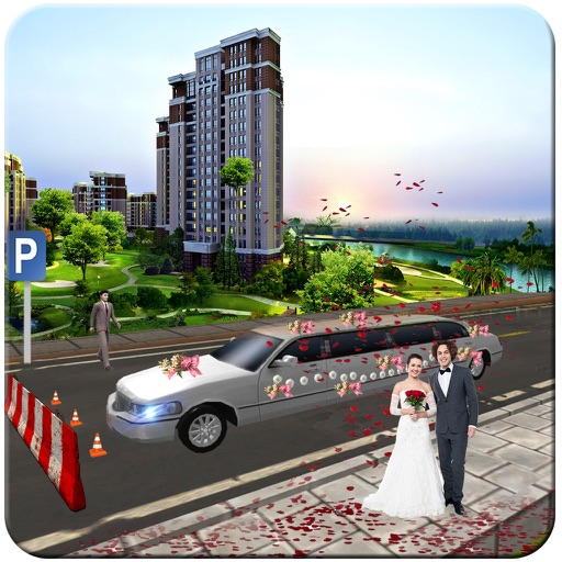 Limo Wedding Transport with Luxurious Parking