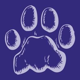 EquiSketch Pets