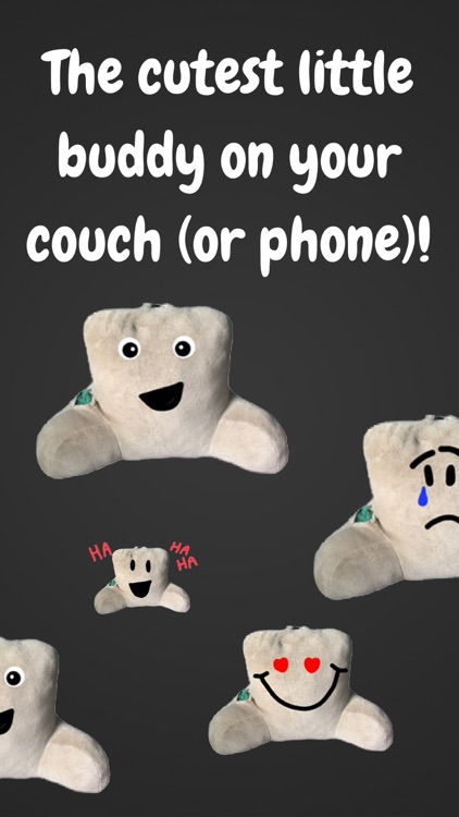 Couch Pillow