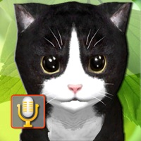 Codes for Talking Kittens, cats that can talk and repeat Hack
