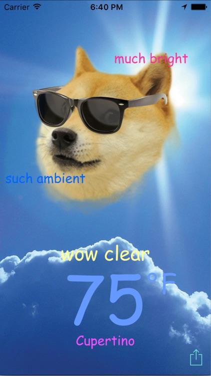Doge Weather