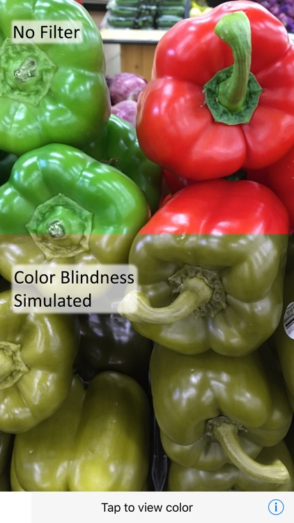 Ccolor - Color Blindness AR Solution screenshot-0