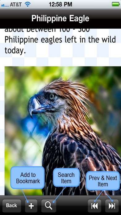 Birds Encyclopedia review screenshots