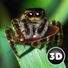 狼蛛怪物蜘蛛模拟
