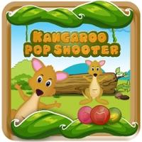 Codes for Kangaroo Pop Shooter Blast Hack