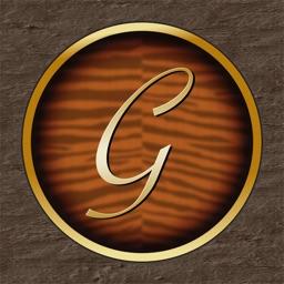 Guitar Tuner TN-1G