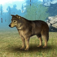 Codes for Wild Wolf Simulator 3D Runner Hack