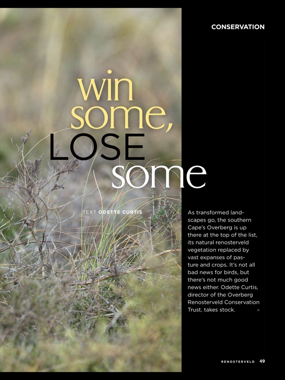 African Birdlife (Magazine) screenshot 10